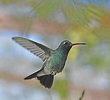 Just Humming  by Judy Grant