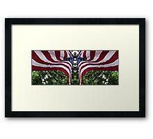 Mirrored Flag Framed Print