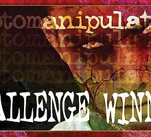Challenge Banner by M a r i e B a r c i a