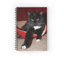 Posing For You Spiral Notebook