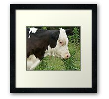 Can I Eat This? Framed Print