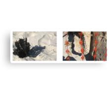 beach muse #2 Canvas Print