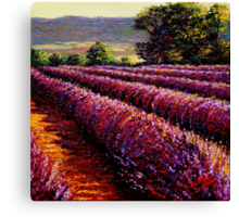French Provençal Lavender Afternoon Canvas Print