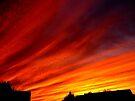 Fire Sky by Veronica Schultz
