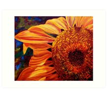Sunlight on the Sunflower Art Print
