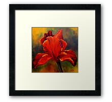 Red Iris Framed Print