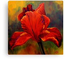 Red Iris Canvas Print