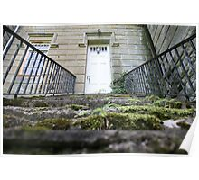 moss covered steps Poster
