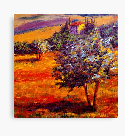 Hot Summer in the Olive Grove Canvas Print
