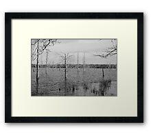 Deadwood Shores Framed Print