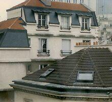 Rooftops atop Montparnasse by leystan