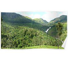 Kerala Tea Plantation Poster