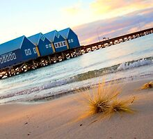 dune grass and the Busselton Jetty by Martin Pot