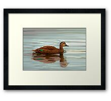 Ducks - Smooth Sailing Framed Print