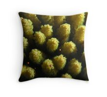 Sex on the Reef Throw Pillow
