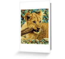 Nothing else to do Greeting Card