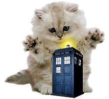 Kitty & The TARDIS by SpoilersCo