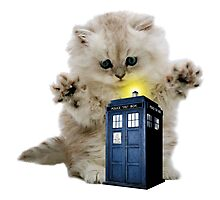 Kitty & The TARDIS Photographic Print