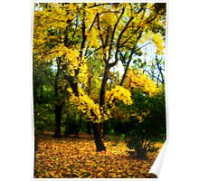 Yellow tree with Orton Effect. Poster
