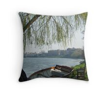 River view Throw Pillow