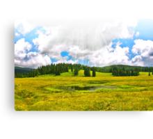 Alpine plateau in vivid colors. Canvas Print