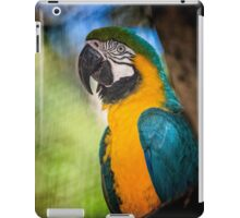 Macaw from Parque Das Aves iPad Case/Skin