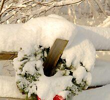 Merry Christmas - Wreath II by Alana Ranney