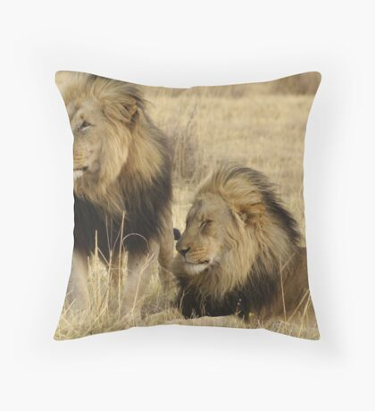 Waterberg Father and Son  Throw Pillow