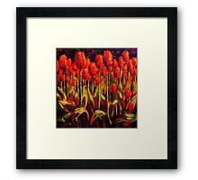 Red Tulips in the Light Framed Print