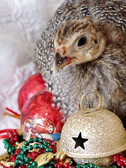 A Guinea Fowl For Christmas by angelandspot