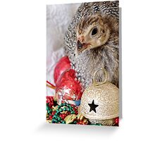 A Guinea Fowl For Christmas Greeting Card