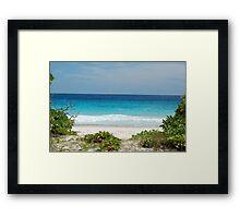 Grand Soeur (Seychelles) Framed Print