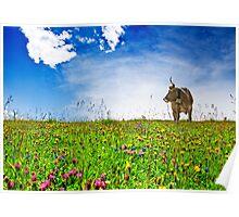Swiss Meadow Poster