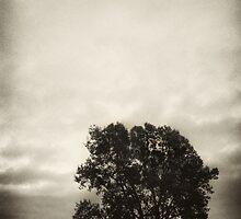 Childhood Memories - Minnesota by Kent DuFault