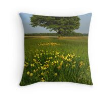 Day Lilies in a Meadow of an Old Homestead Throw Pillow