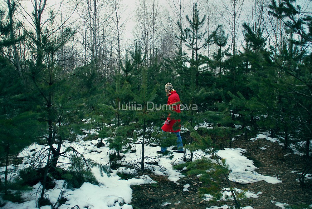 walk in-field among fir-trees by Iuliia Dumnova