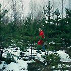 walk in-field among fir-trees by Iuliia Dumnova