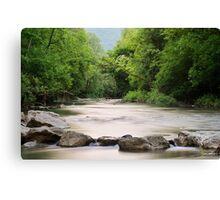 The forgotten river Canvas Print