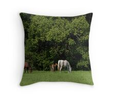 Mares and Foals Throw Pillow