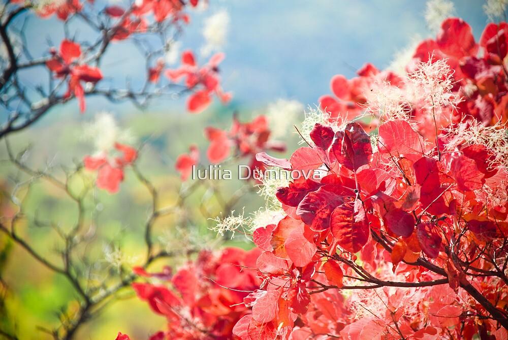 Pink branch - grace by Iuliia Dumnova