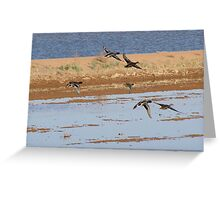 Mallards on the move....... Greeting Card