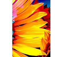 bright as... Photographic Print
