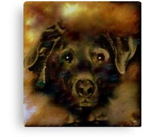 JADE-MY SPECIAL LAB Canvas Print