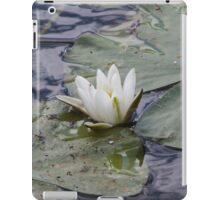 waterlily in the lake iPad Case/Skin