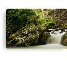 Springtime waterfall Canvas Print