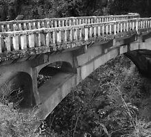 Bridge by photobydebra