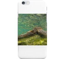 Under the Sea-Starfish iPhone Case/Skin