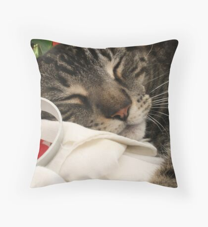 Cookies and Cats Throw Pillow