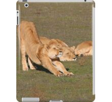 Sleepy Lionesses iPad Case/Skin