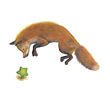 Jumping Fox, Go follow the Star Photographic Print